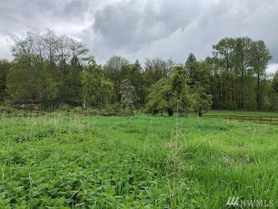 Snohomish Residential Lots & Land For Sale: 19225 Welch Rd
