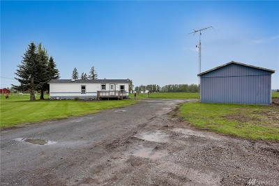 Sumas Single Family Home For Sale: 8902 Telegraph Rd