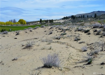 Chelan, Chelan Falls, Entiat, Manson, Brewster, Bridgeport, Orondo Residential Lots & Land For Sale: 402 Desert Canyon Blvd