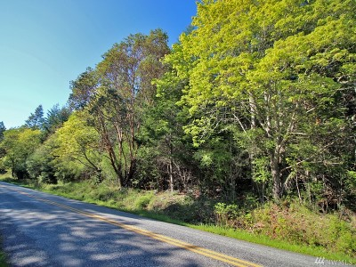 Residential Lots & Land For Sale: West Side Rd