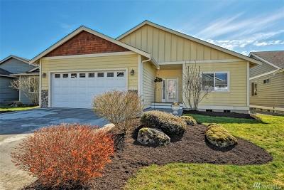 Bellingham Single Family Home For Sale: 4241 Spring Creek Lane