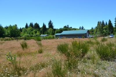 Forks% Residential Lots & Land For Sale: 999 Elk Corner Rd