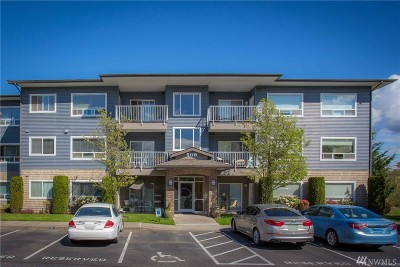 Whatcom County Condo/Townhouse Pending Inspection: 500 Darby Dr #214