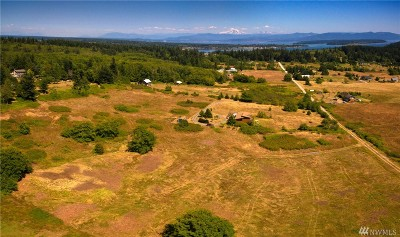 Lummi Island Residential Lots & Land For Sale: 4184 Sunnyhill Lane