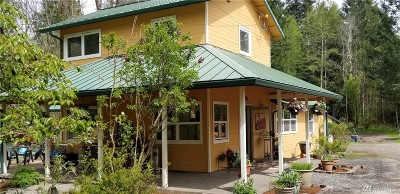 Olympia Single Family Home For Sale: 3442 Gull Harbor Rd NE