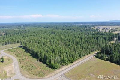 Mason County Residential Lots & Land For Sale: 6 W Public Works Dr