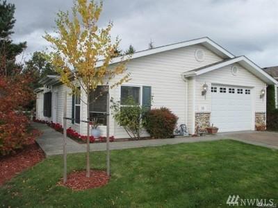 Whatcom County Condo/Townhouse Pending Inspection: 3993 Gentlebrook Lane #31