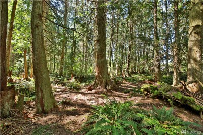 Langley Residential Lots & Land For Sale: Lot 19 Ashley Loop