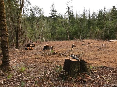 Residential Lots & Land For Sale: 573 Salmon St