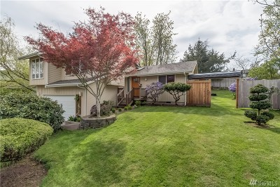 Bellingham Single Family Home For Sale: 2217 W Birch
