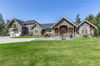 Sumas Single Family Home For Sale: 8775 Vedder View Lane