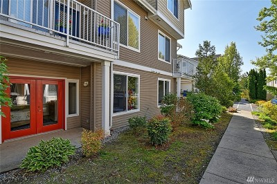 Carnation, Duvall, Fall City Condo/Townhouse For Sale: 14715 1st Lane NE #101
