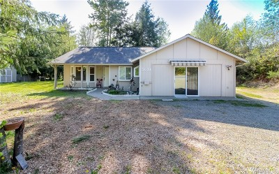Mason County Single Family Home For Sale: 5631 E Grapeview Loop Rd