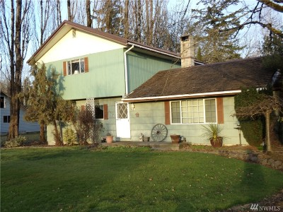 Chehalis Single Family Home For Sale: 165 Ribelin Rd