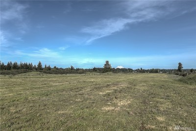 Olympia Residential Lots & Land For Sale: 8314 Barbouillat St SW