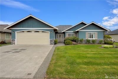 Lynden Single Family Home For Sale: 872 Hemlock Ct