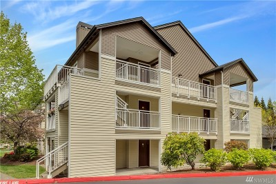 Mukilteo Condo/Townhouse For Sale: 12303 Harbour Pointe Blvd #CC102