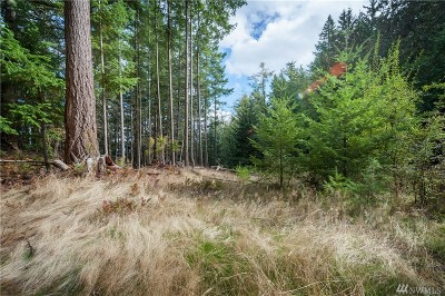 Lummi Island Residential Lots & Land For Sale: 1164 Scenic Ave