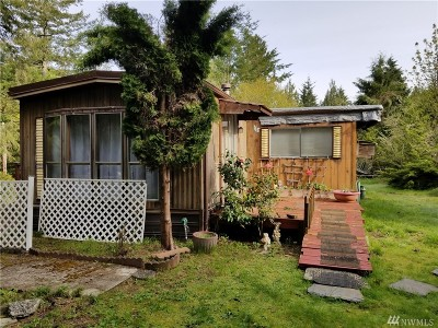 Shelton Single Family Home For Sale: 240 E Willapa Rd