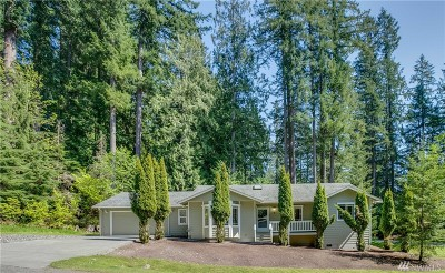 Bellingham Single Family Home For Sale: 1 Ravenwood Ct