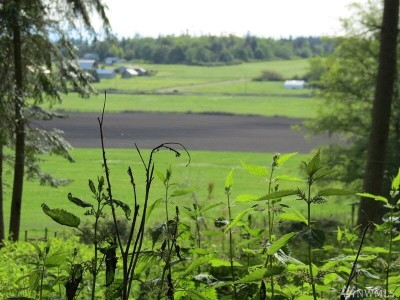 Coupeville Residential Lots & Land For Sale: 417 Jacobs Rd