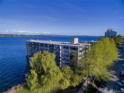 Seattle Condo/Townhouse Sold: 2040 43rd Ave E #501