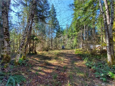 Mason County Residential Lots & Land For Sale: 51 N Gadwall Place