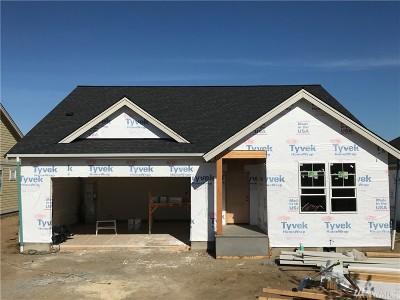Single Family Home For Sale: 2122 Ninebark St
