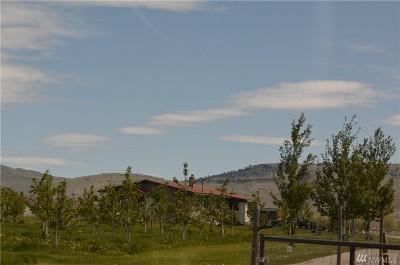 Chelan, Chelan Falls, Entiat, Manson, Brewster, Bridgeport, Orondo Residential Lots & Land For Sale: 129 Big Boulder Lane