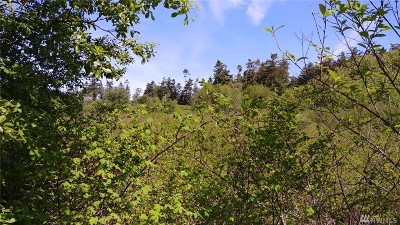 Coupeville Residential Lots & Land For Sale: La Plazo