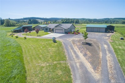 Chehalis Single Family Home For Sale: 409 Spooner Rd