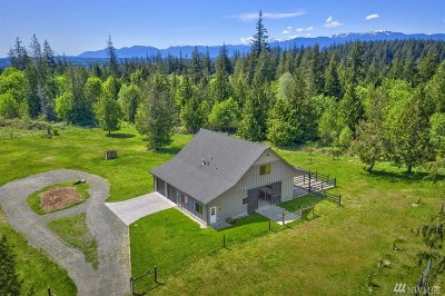 Port Ludlow Single Family Home For Sale: 375 Todd Rd