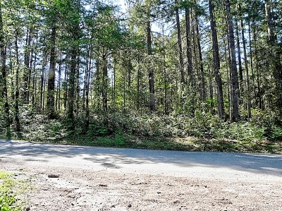Mason County Residential Lots & Land Pending: 50 E Arellem Rd