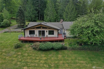 Pierce County Single Family Home For Sale: 18010 NW Herron Rd NW