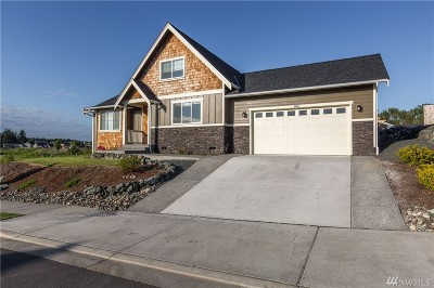 Ferndale Single Family Home For Sale: 5966 Monument Dr