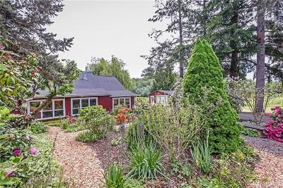 Port Orchard Single Family Home For Sale: 14241 Bethel Burley Rd SE