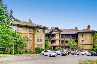 Issaquah Condo/Townhouse For Sale: 1000 Cabin Creek Lane SW #B-207