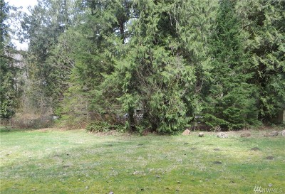 Skagit County Residential Lots & Land For Sale: 54165 Steelhead Landing
