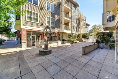 King County Condo/Townhouse For Sale: 2901 NE Blakeley St #420