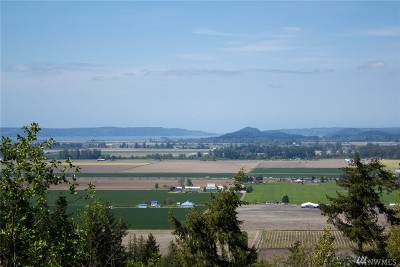Skagit County Residential Lots & Land For Sale: 16 Benson Ridge Lane