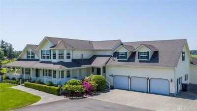 Skagit County Single Family Home For Sale: 17146 Britt Rd