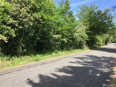 Steilacoom Residential Lots & Land For Sale: 613 Champion St