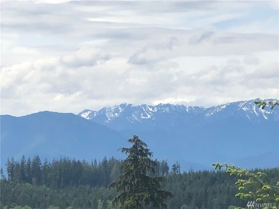 Port Ludlow Residential Lots & Land For Sale: 2 Blue Sky Dr