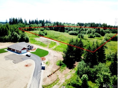 Tenino Residential Lots & Land For Sale: 4030 150th Ave SW