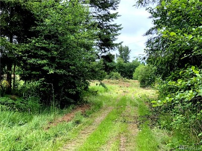Tenino Residential Lots & Land For Sale: 4038 150th Ave SW
