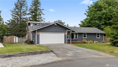 Bellingham Single Family Home For Sale: 1414 Greenville Dr