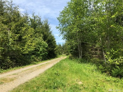 Port Ludlow Residential Lots & Land For Sale: 4 Blue Sky Dr