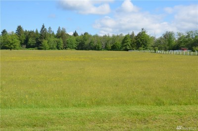 Stanwood Residential Lots & Land For Sale: 324th (Lot E) St NW