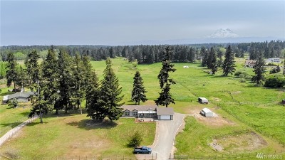 Yelm Single Family Home For Sale: 12604 Rollinghills Lane SE