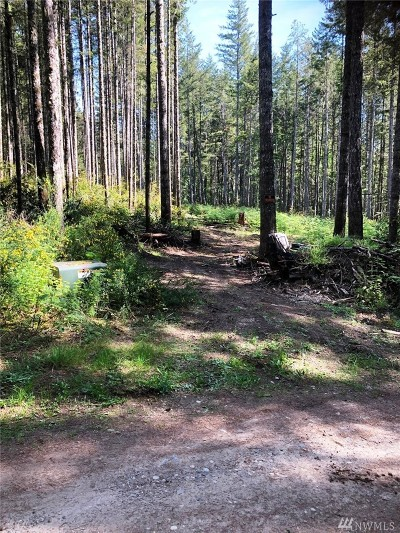 Pierce County Residential Lots & Land For Sale: 20403 10th St KPS